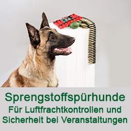 Hund mit Text: Sprengstoffspürhunde Für Luftfrachtkontrollen und Sicherheit bei Veranstaltungen